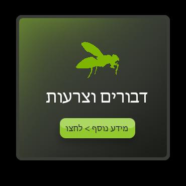 אייקון הדברת דבורים וצרעות