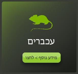 אייקון הדברת עכברים