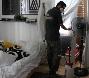ריסוס הדברה ירוקה לחדר של בית